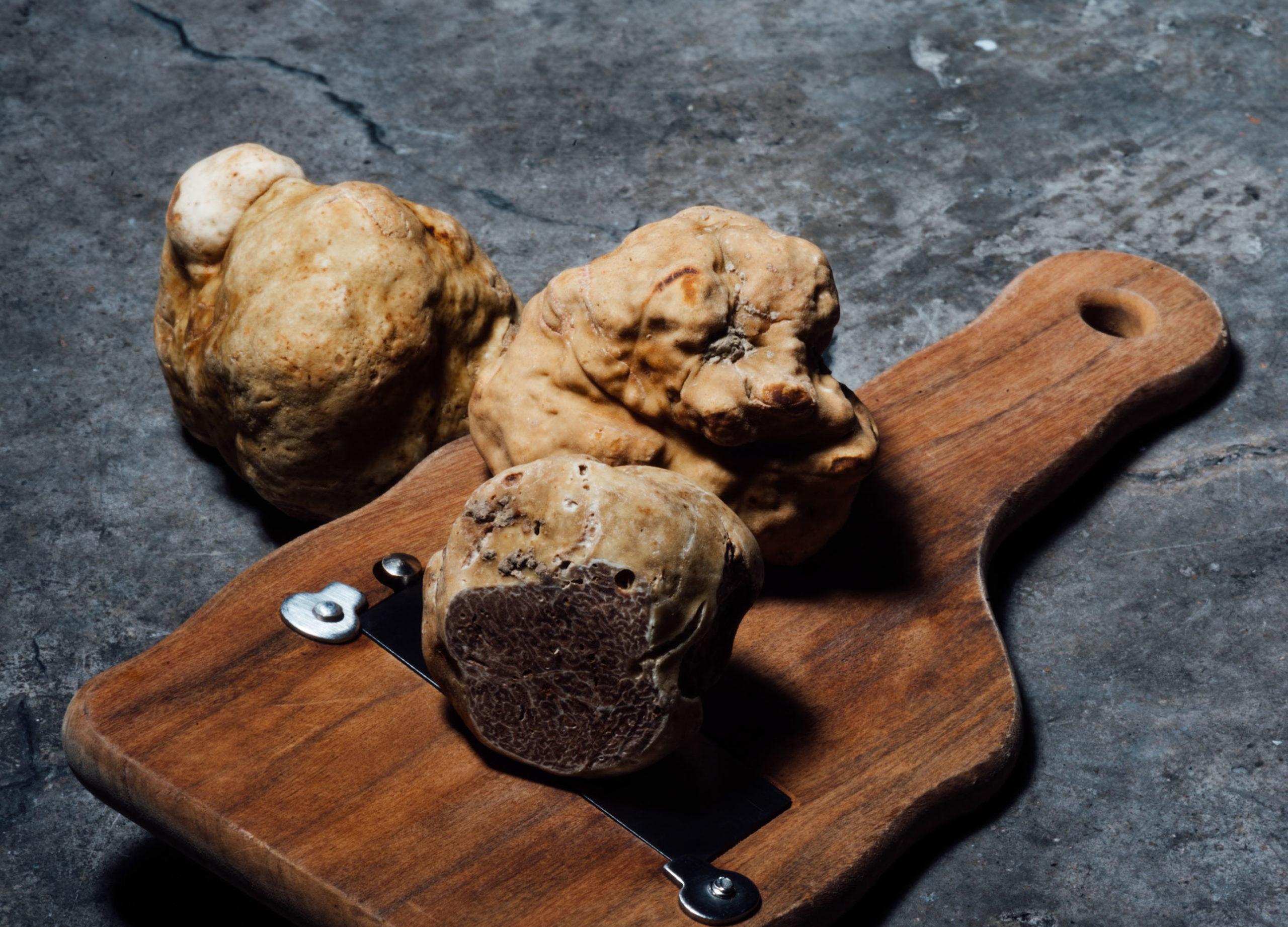 planche à découper avec une truffe italienne qu'on appelle la truffe blanche d'Alba